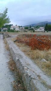 Caminodelhuerto1